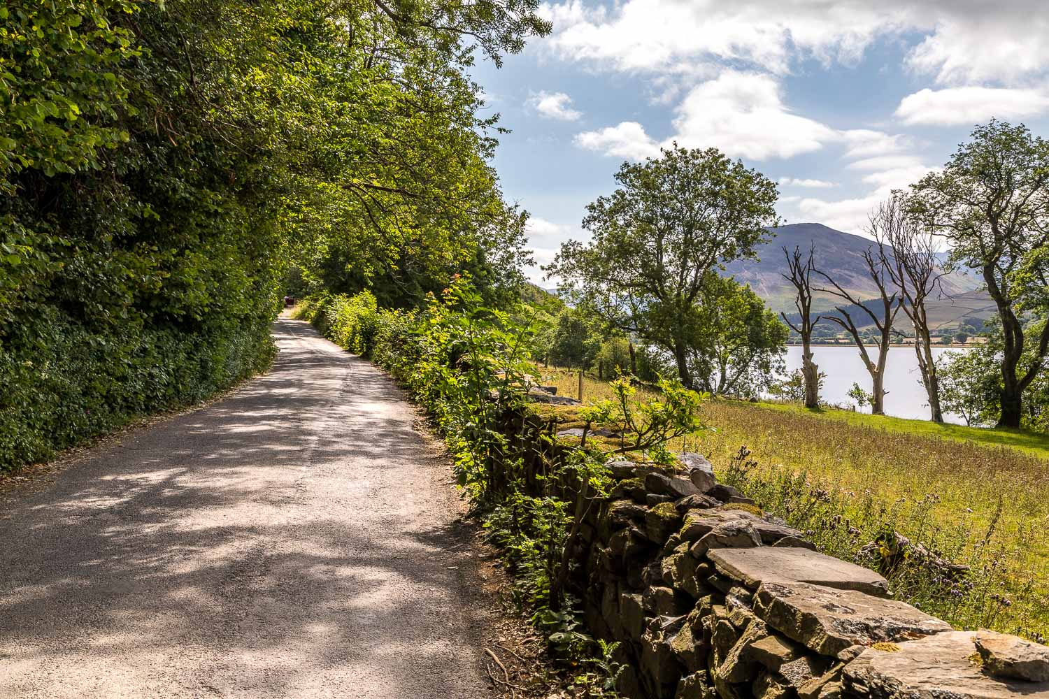 Loweswater-23-36