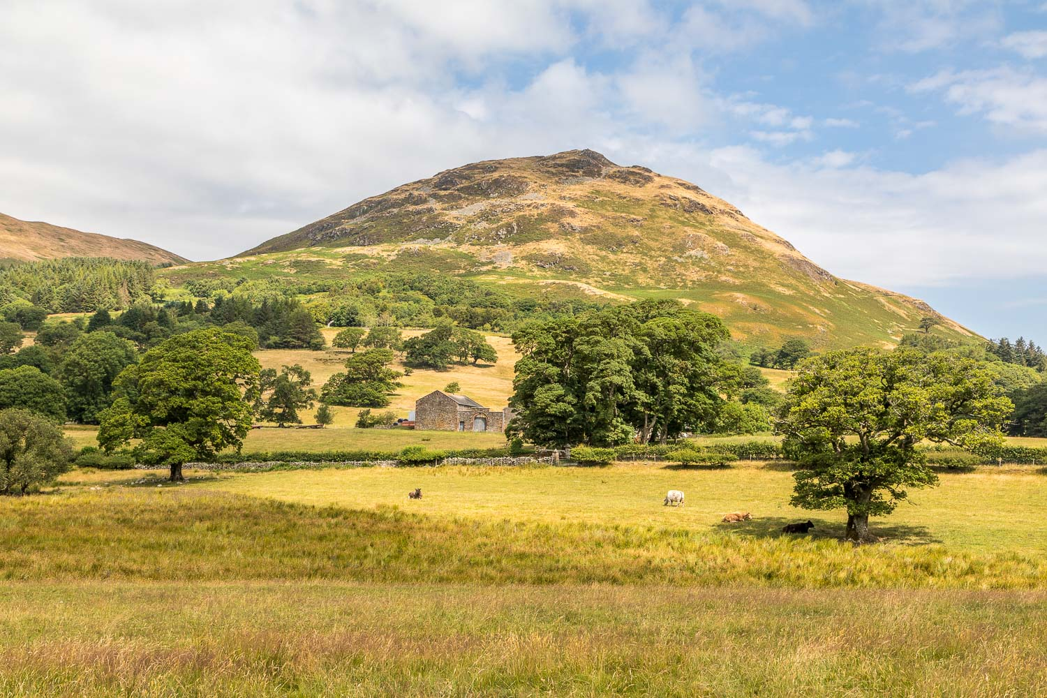 Loweswater-23-46