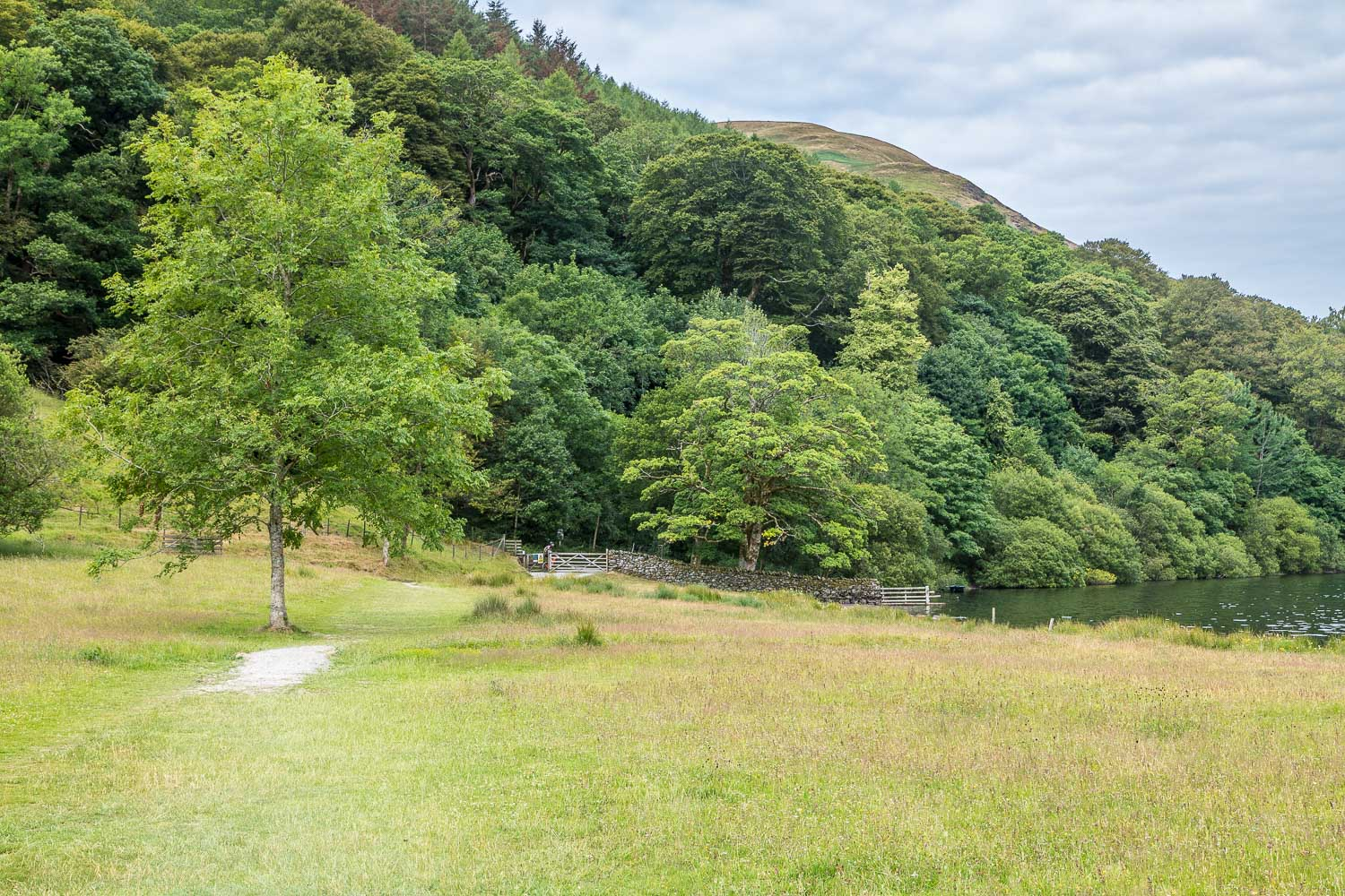 Loweswater-23-5