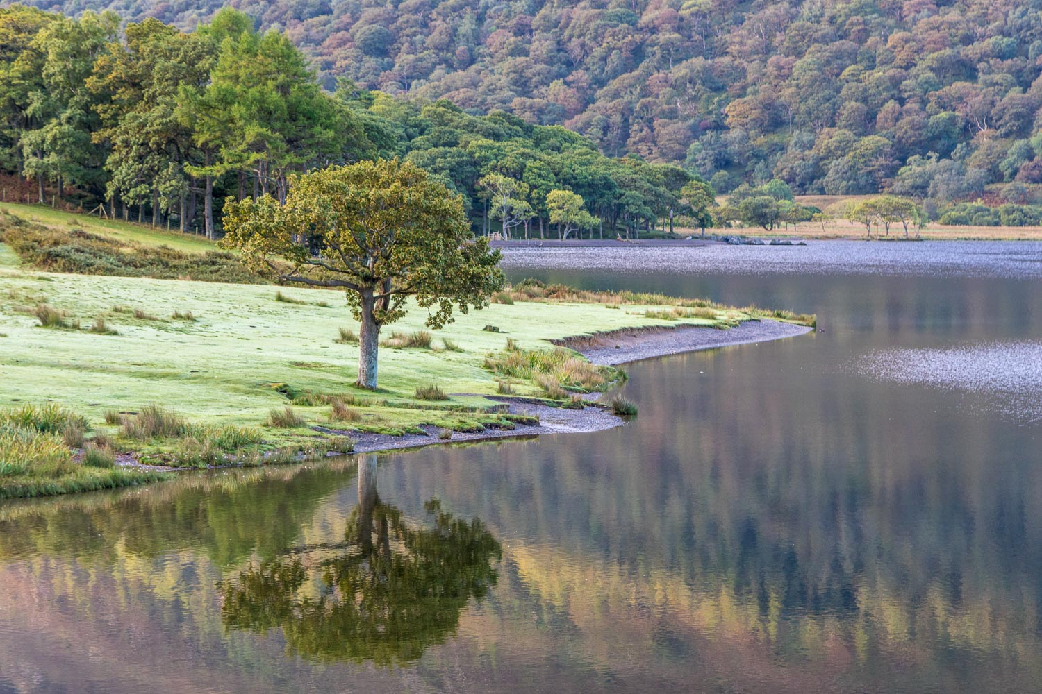 Loweswater-24-5