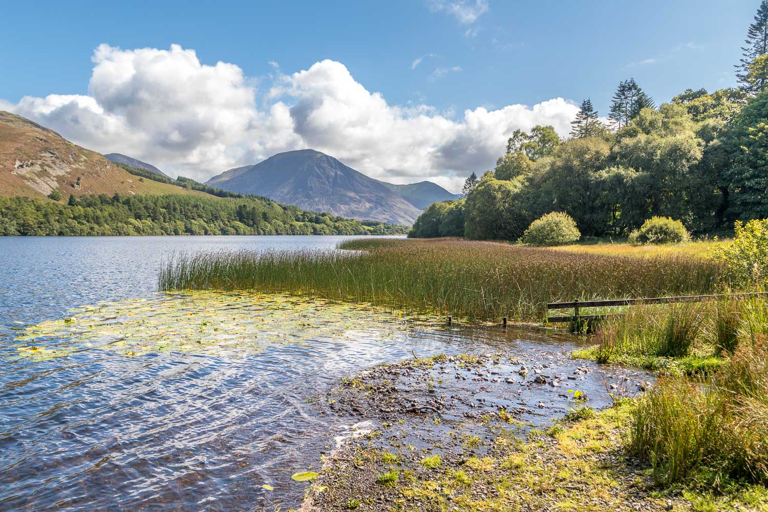 Loweswater views