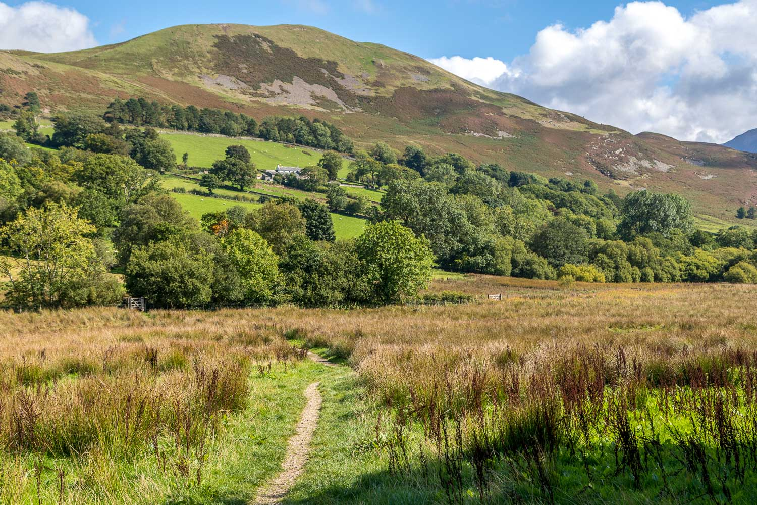Loweswater-24-59