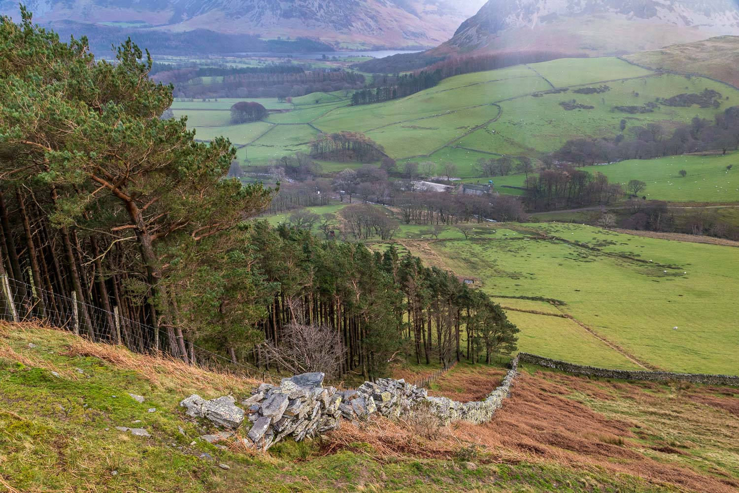 Loweswater-25-16