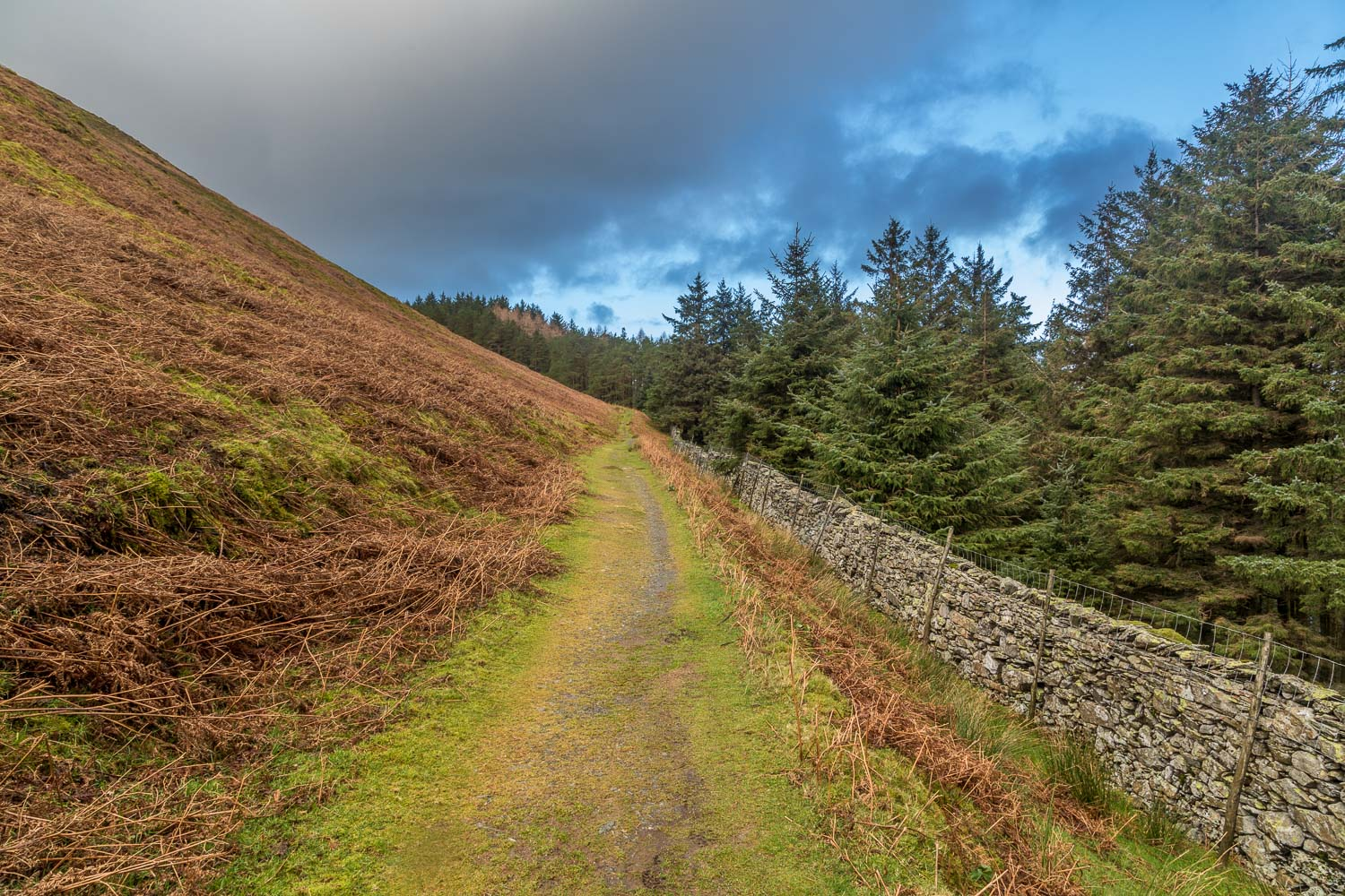 Loweswater-25-17