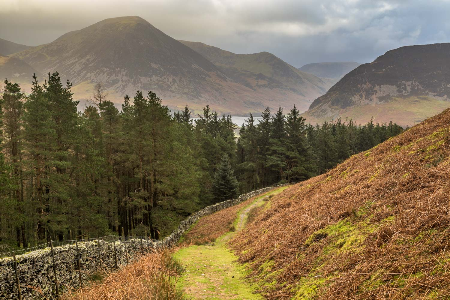 Loweswater-25-19