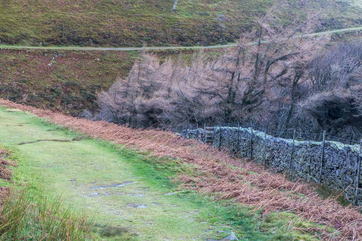 Loweswater-25-20