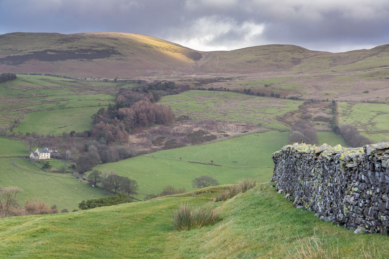 Loweswater-25-31