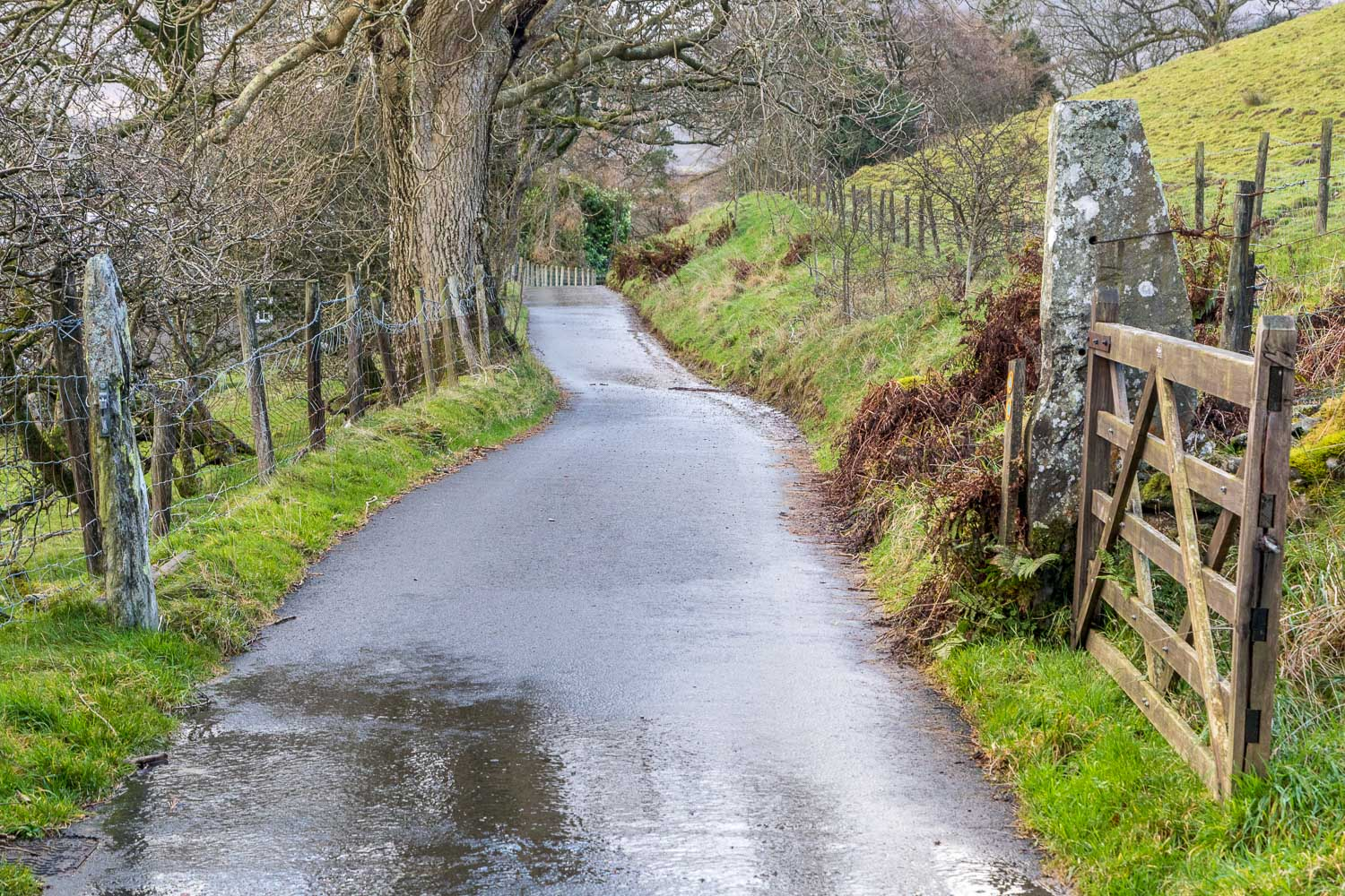 Loweswater-25-33