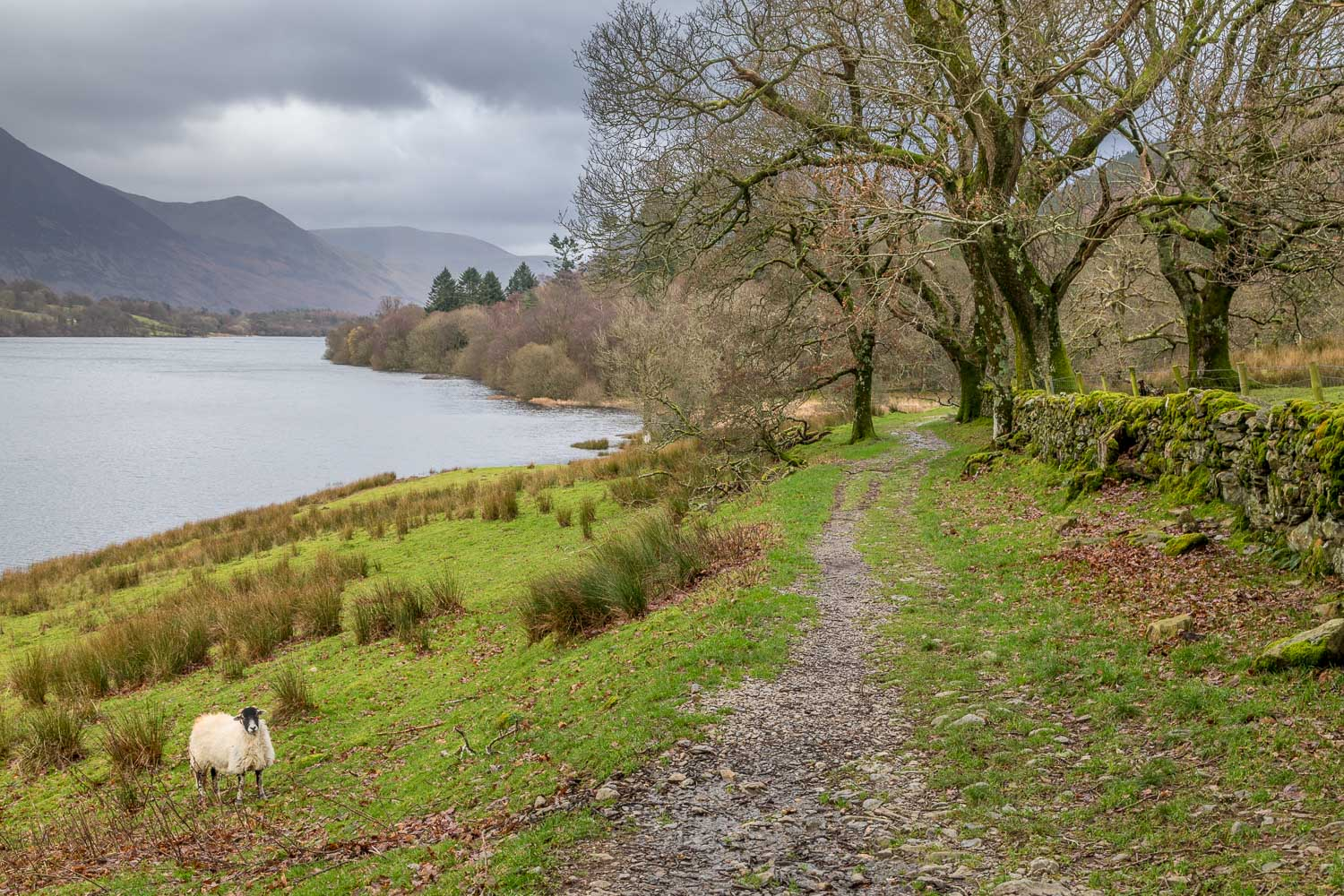 Loweswater-25-37