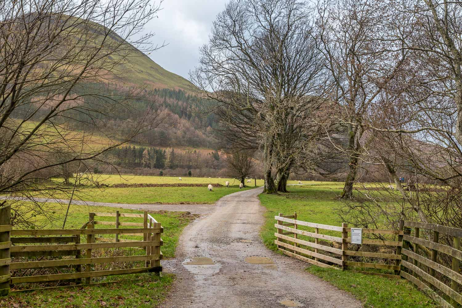 Loweswater-25-4