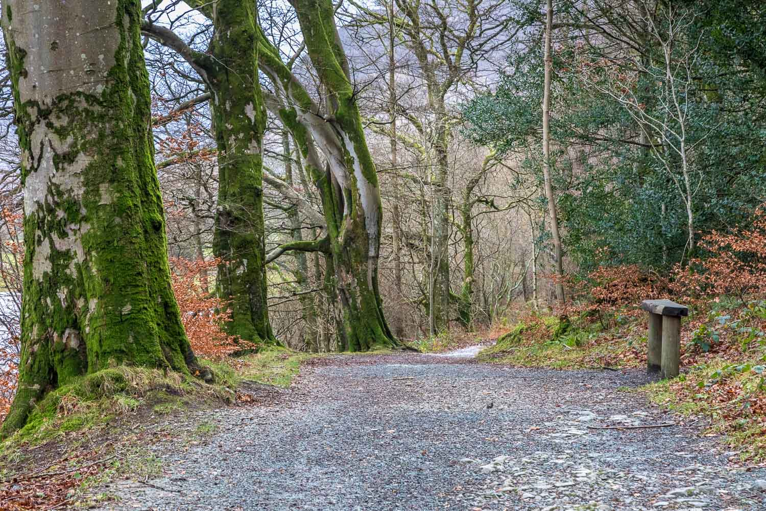 Loweswater-25-44