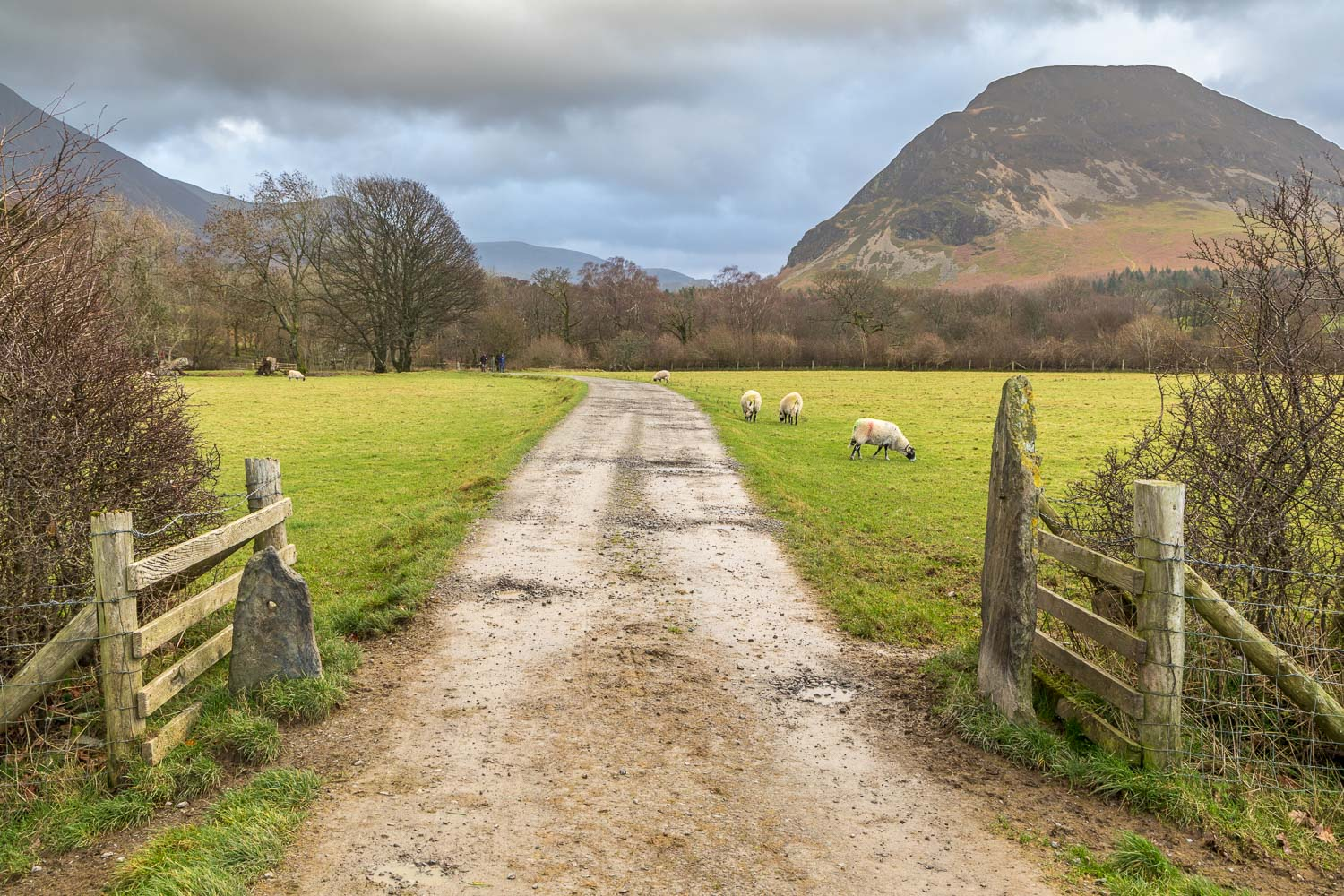 Loweswater-25-45