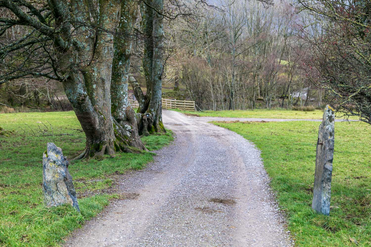 Loweswater-25-46