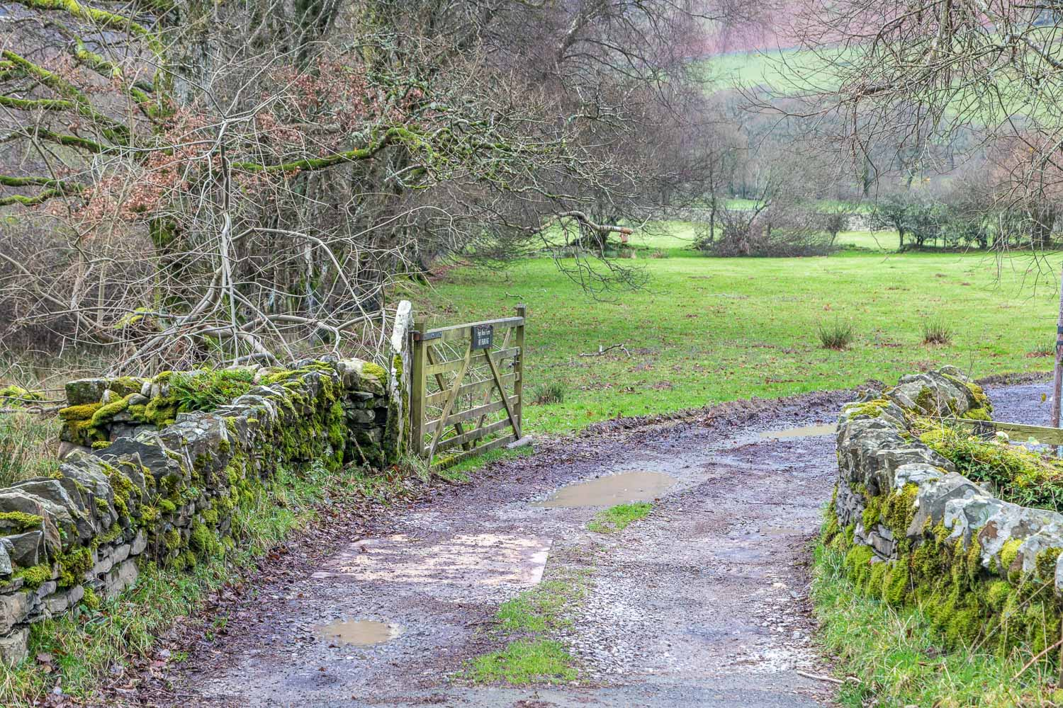 Loweswater-25-5