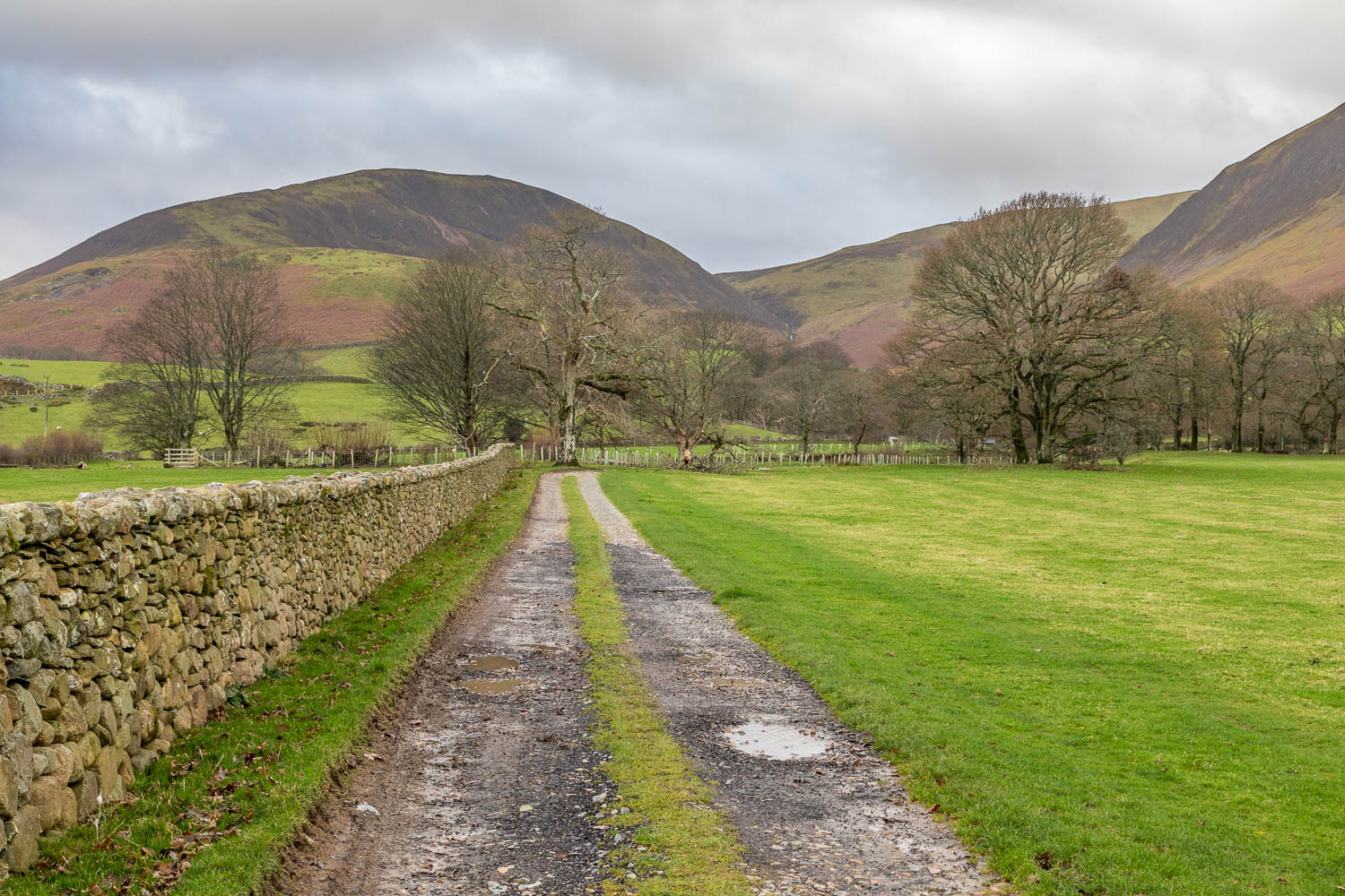 Loweswater-25-6