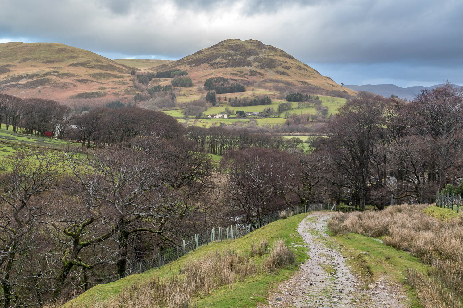 Loweswater-25-7