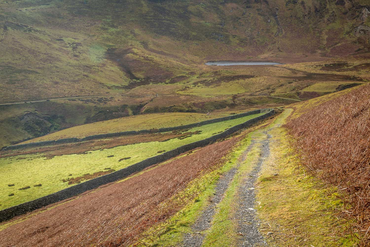 Loweswater-26-12