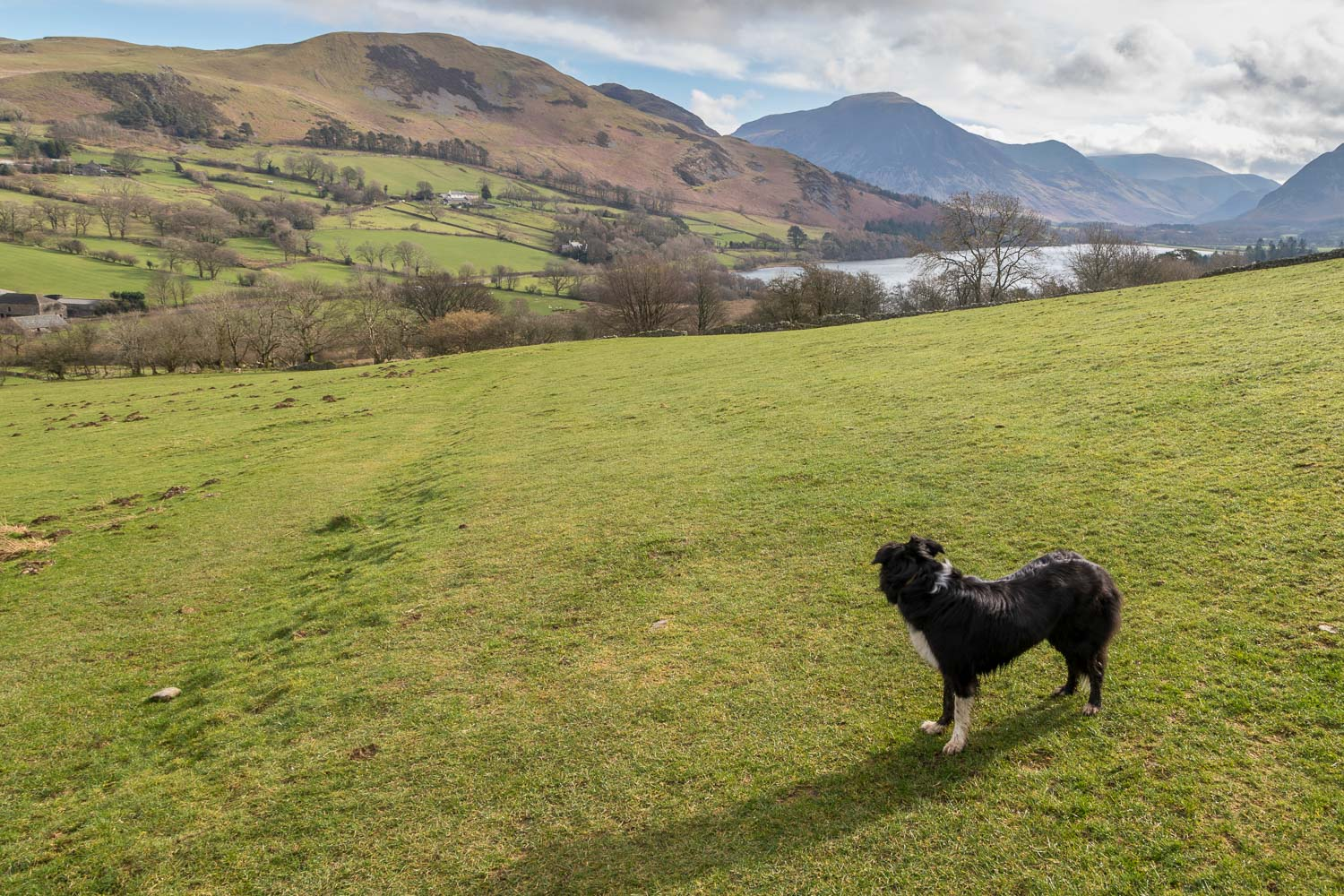 Loweswater-26-42