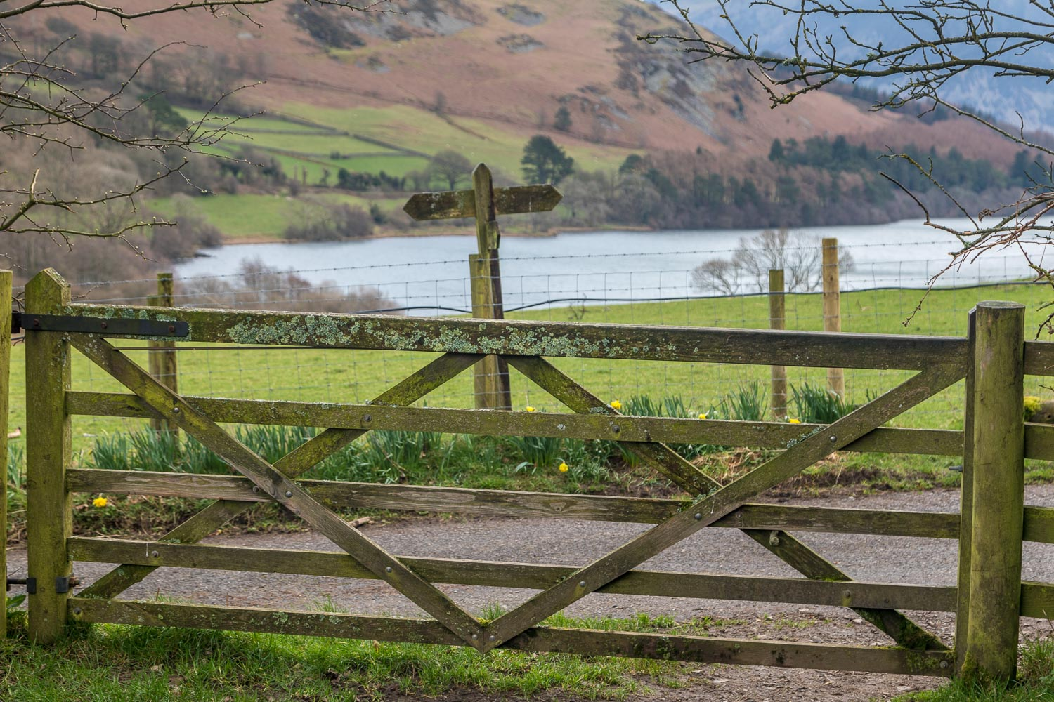 Loweswater-26-44