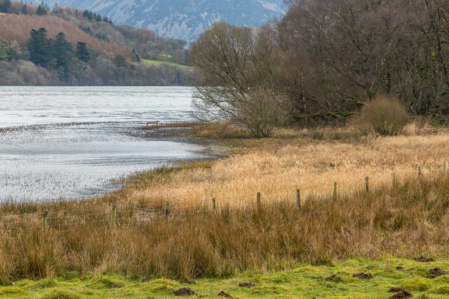 Loweswater-26-47
