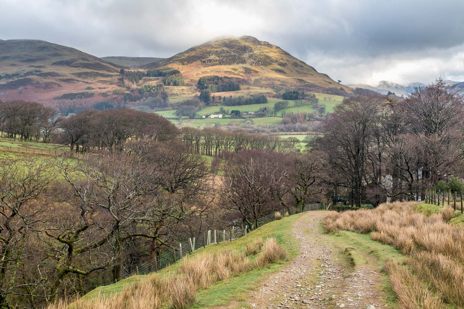 Loweswater-26-5
