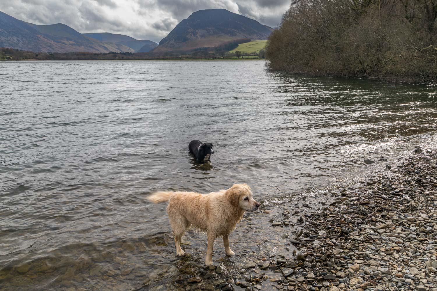 Loweswater-26-53