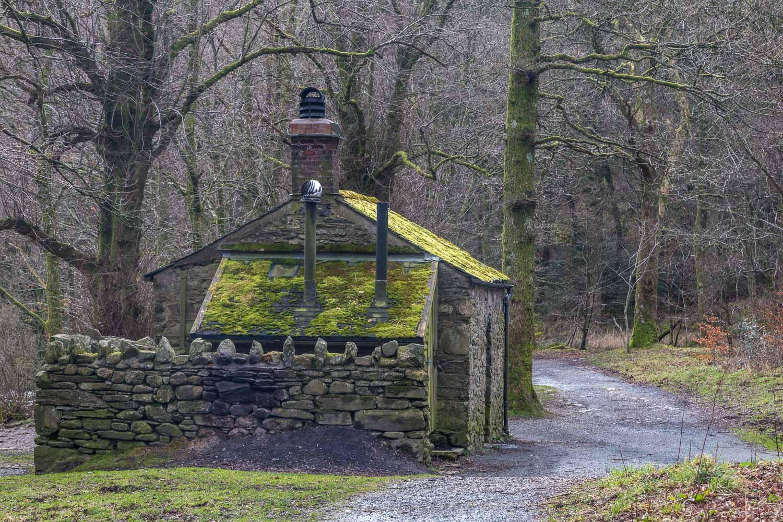 Loweswater walk, Holme Wood bothy