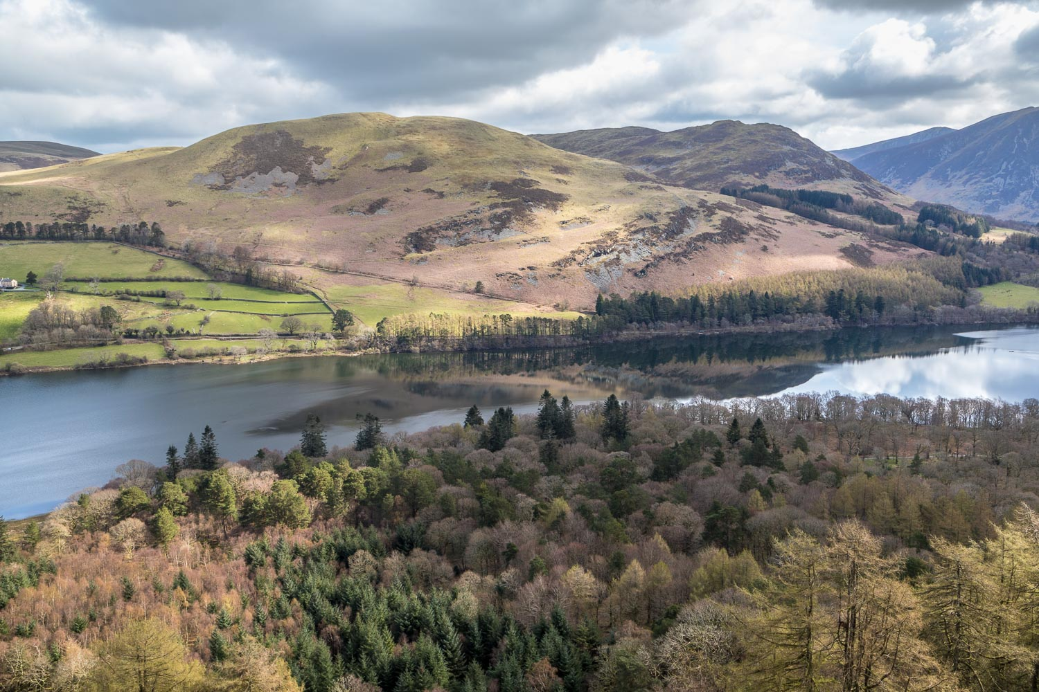 Loweswater, Holme Wood, Darling Fell