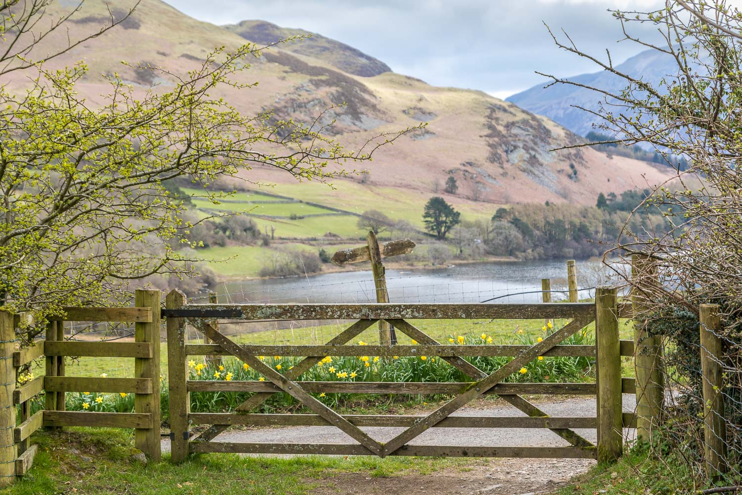 Loweswater walk, Hudson Place