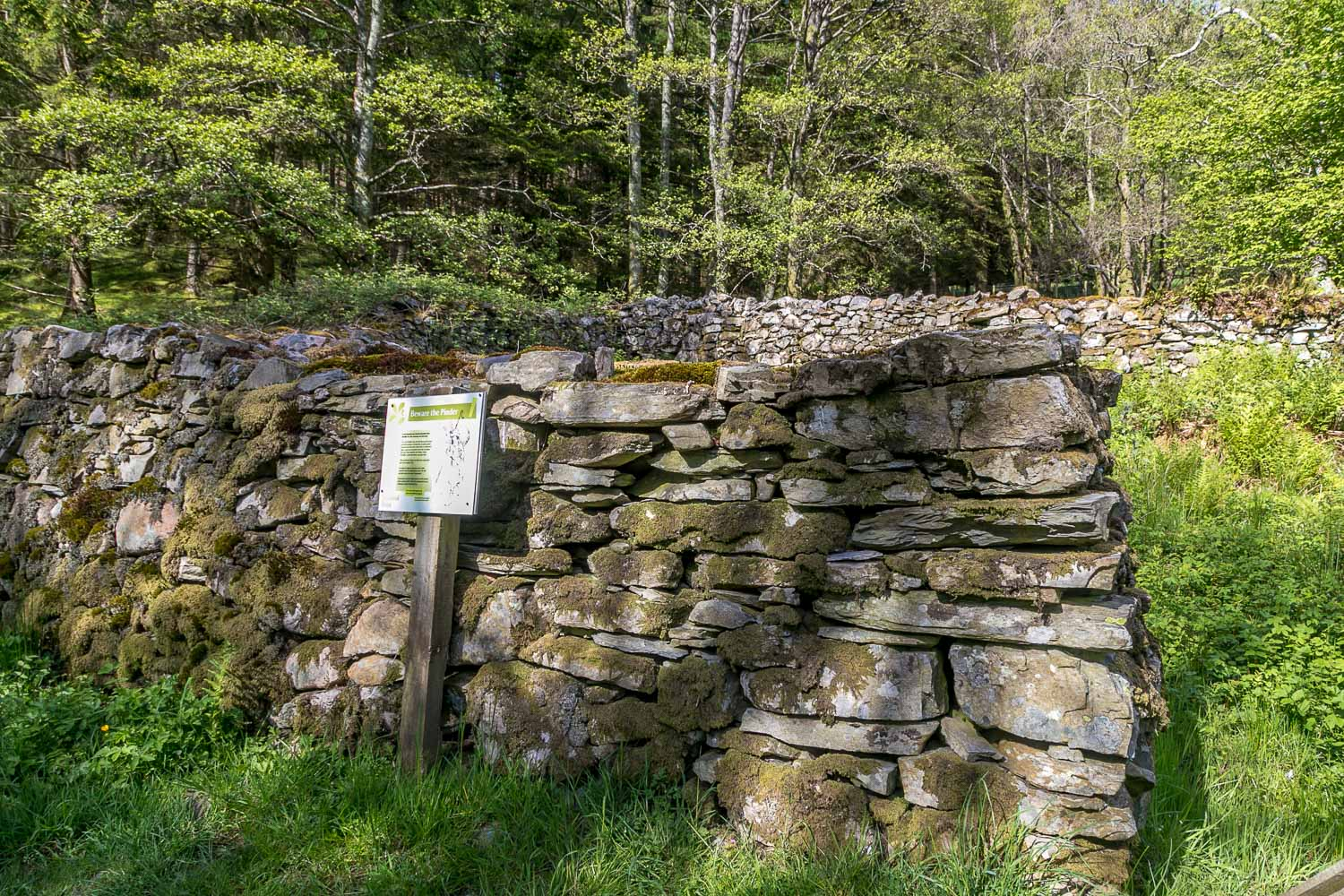 Loweswater walk, pinfold