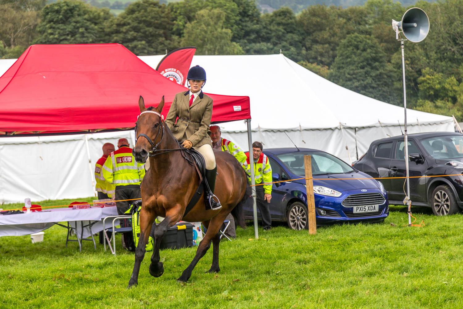 Loweswater Show 2018-1