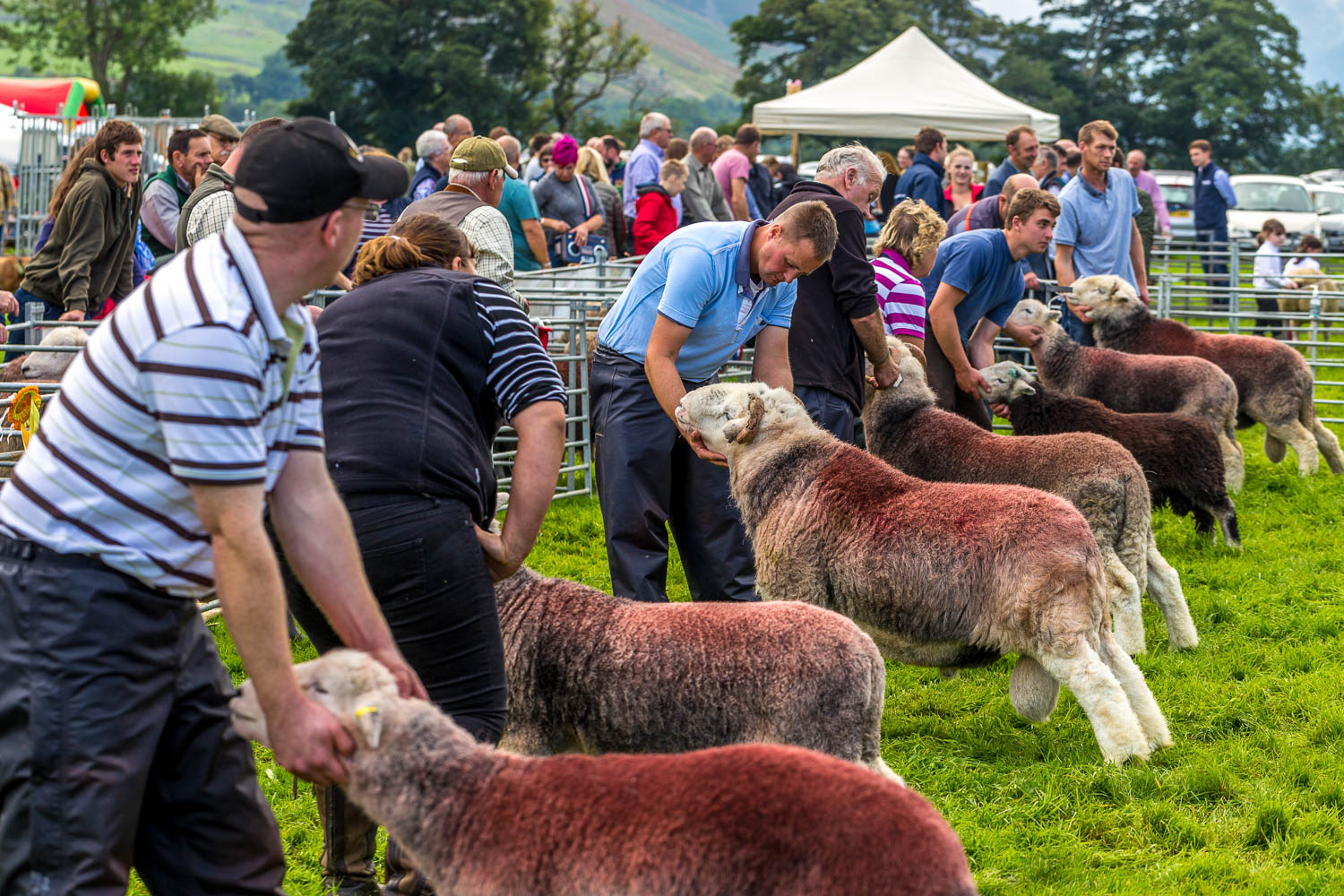 Loweswater Show 2018-11