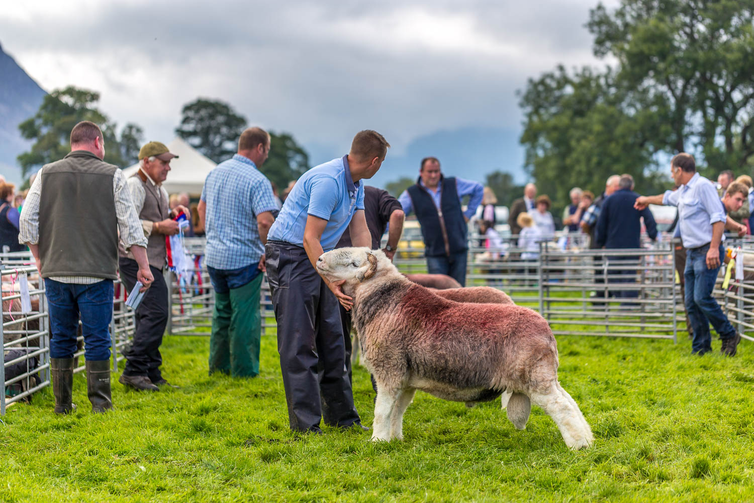 Loweswater Show 2018-12