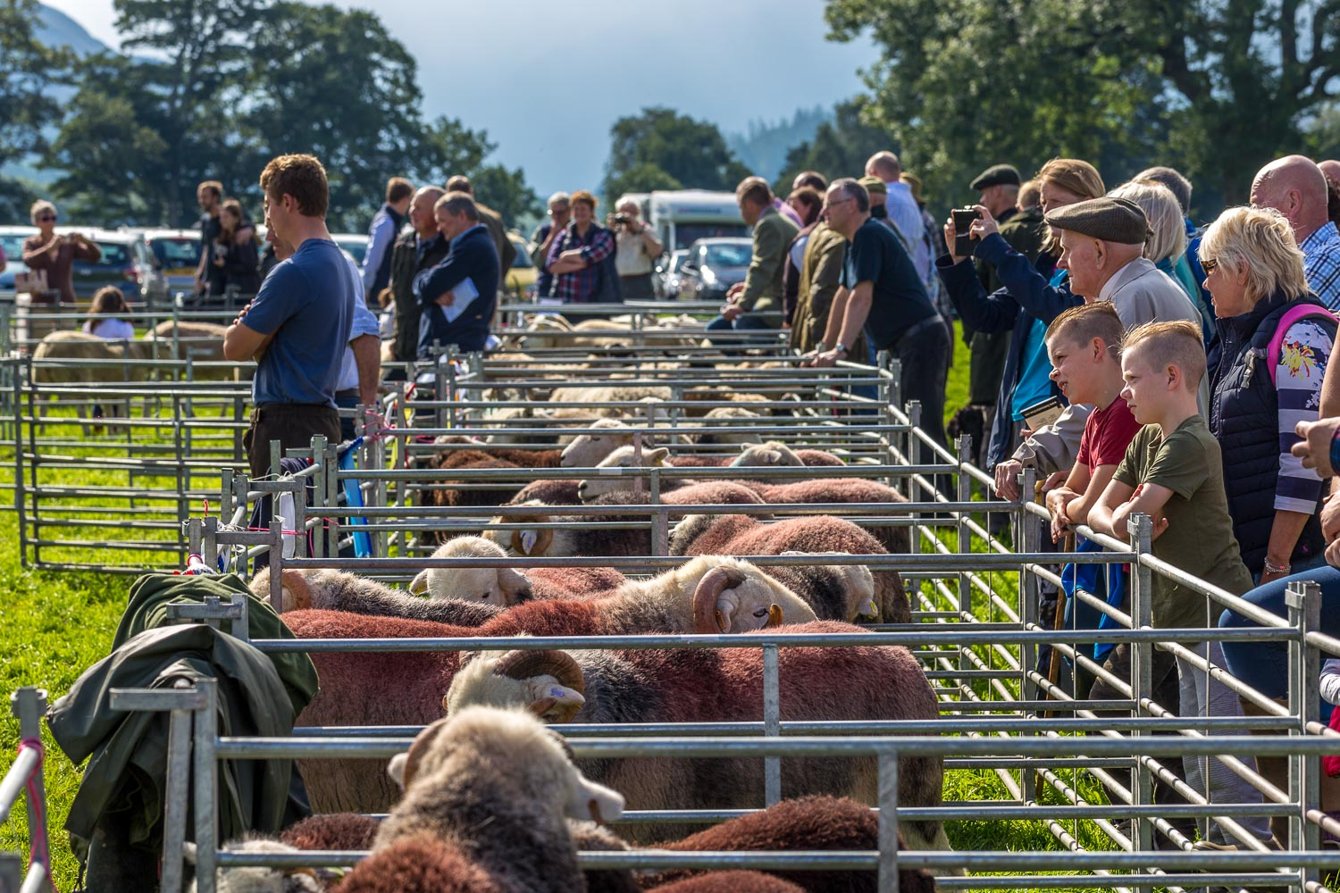 Loweswater Show 2018-16