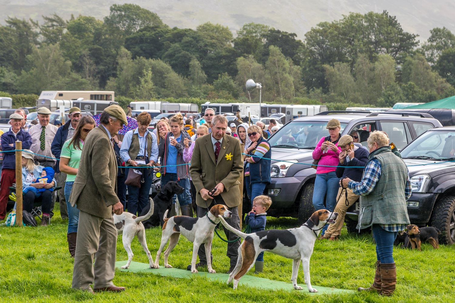 Loweswater Show 2018-34