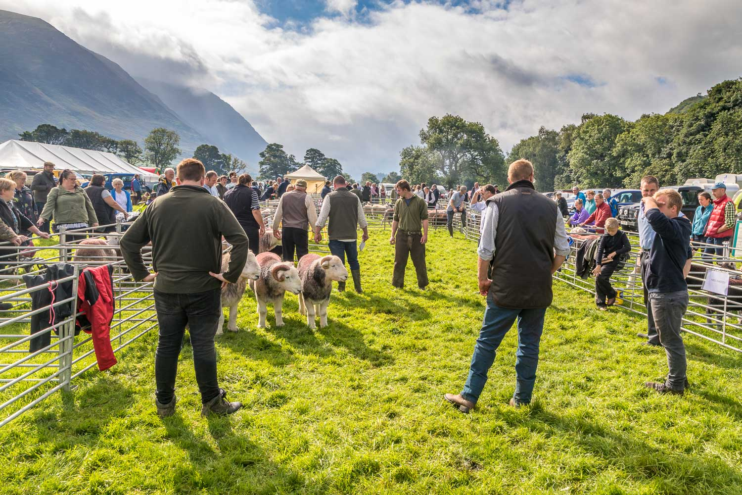 Loweswater Show 2018-6