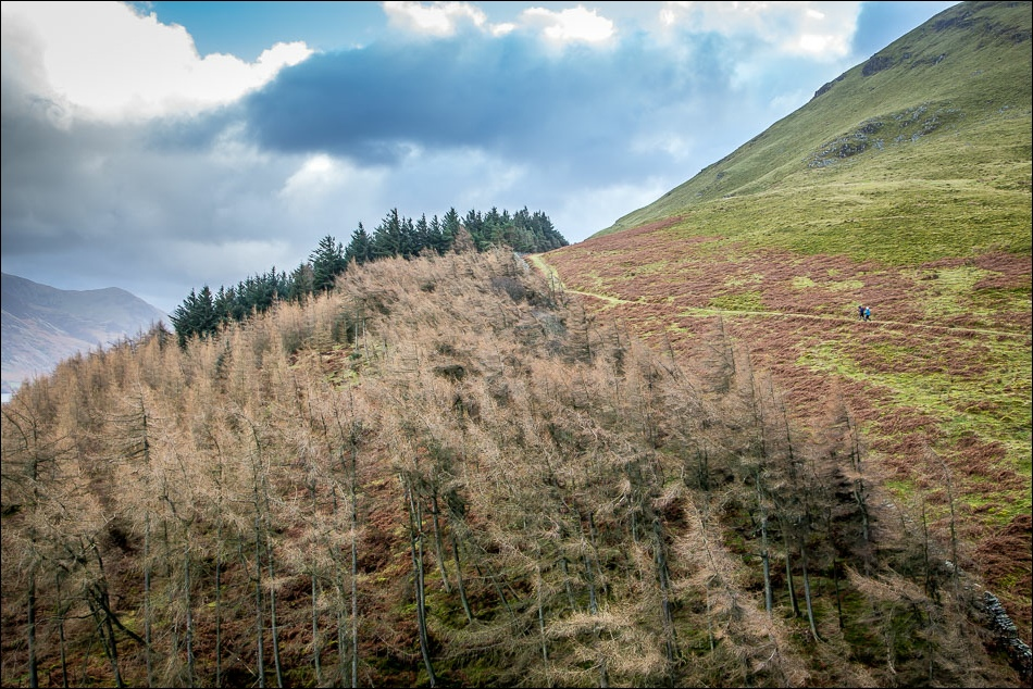 old coffin road, Loweswater