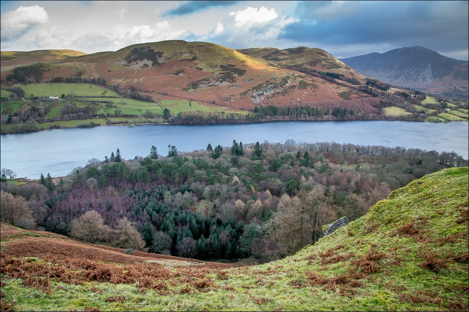 Holme Wood and Loweswater