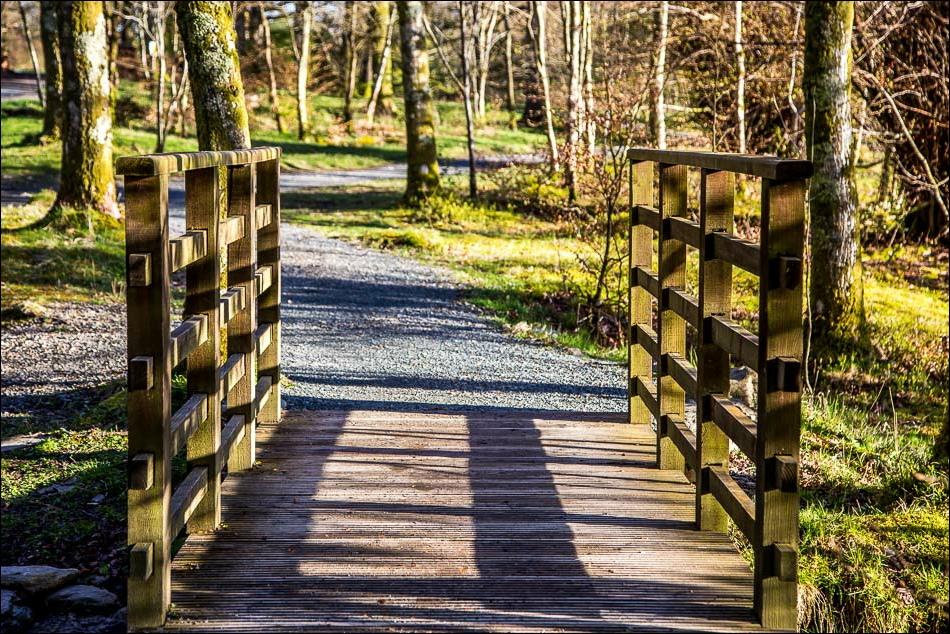 footbridge over Holme Beck in Holme Wood