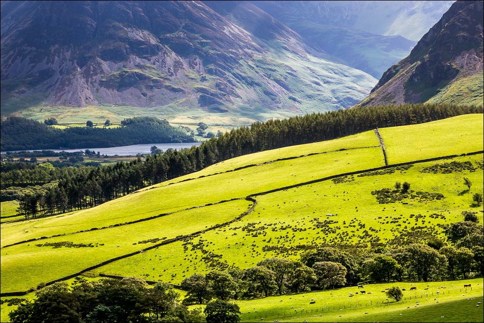 Crummock Water view