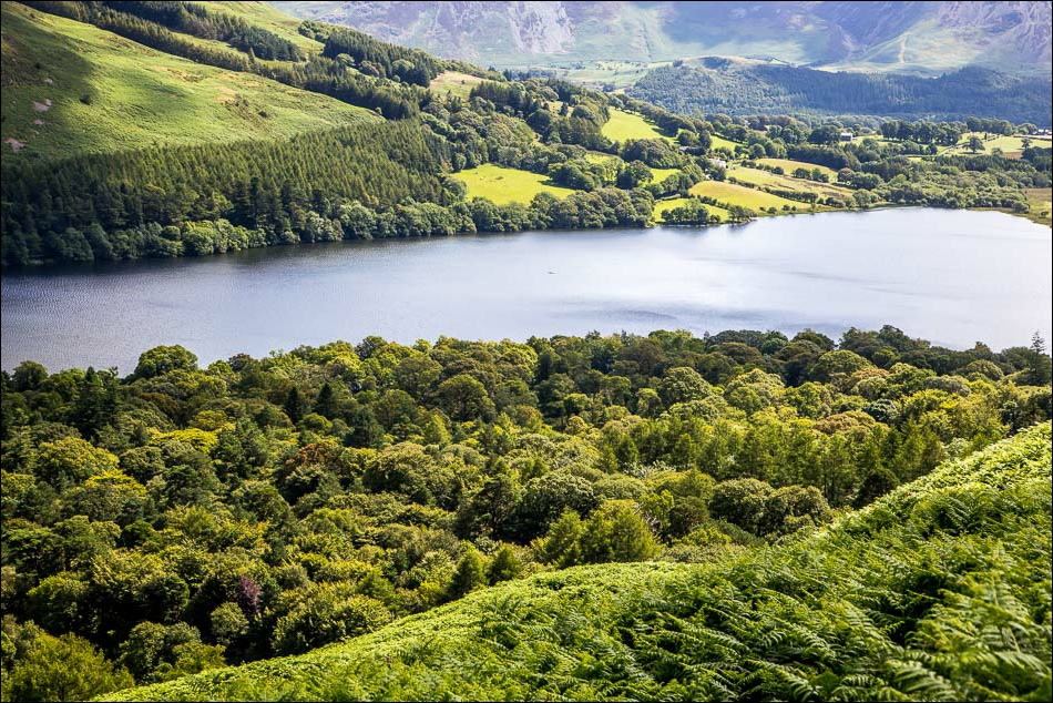 Loweswater7-34