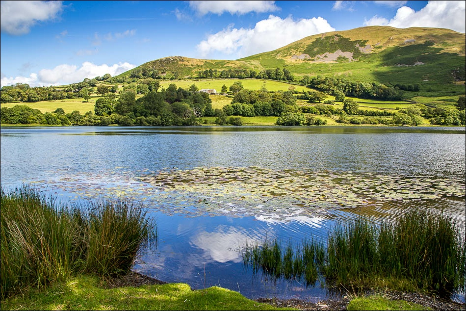 Loweswater, Darling Fell
