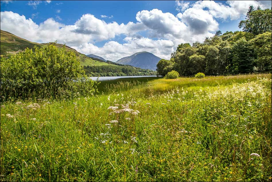 Loweswater7-45
