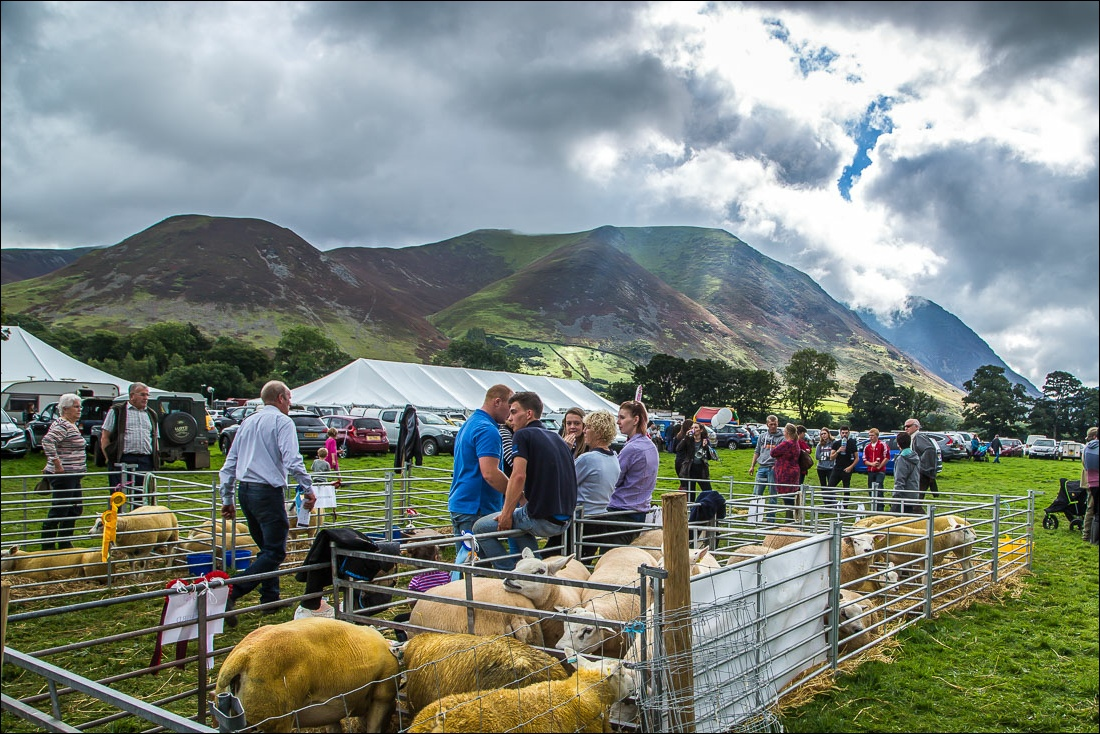 Loweswater2016-22