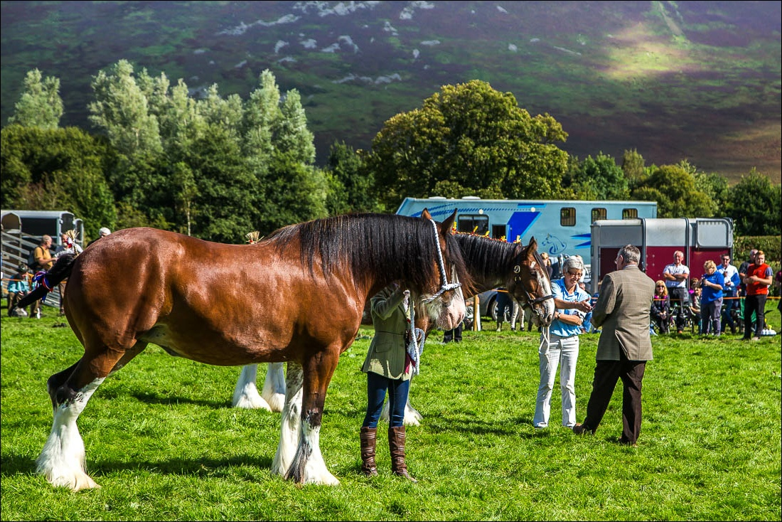 Loweswater2016-42