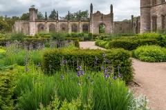 Lowther Castle gardens