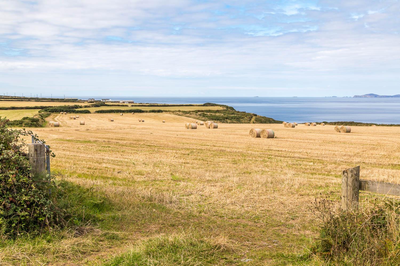 Marloes Peninsula walk