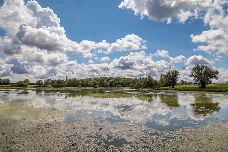 Lake Guichard