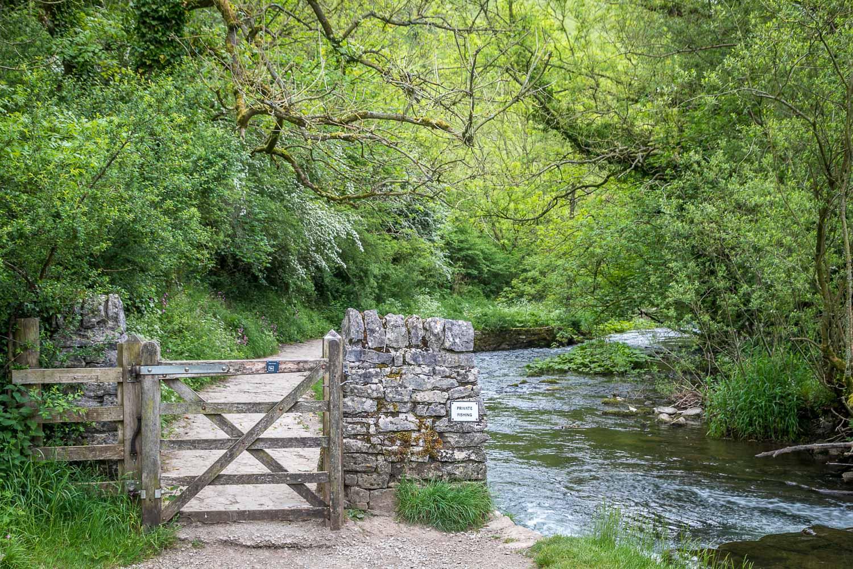 Milldale walk, River Dove