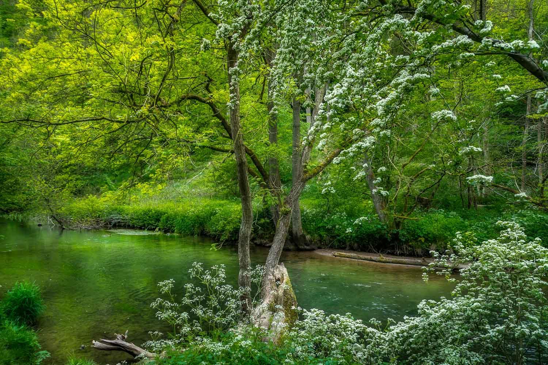 River Dove walk